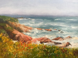 Donna Pierce-Clark - Half Moon Bay Surf