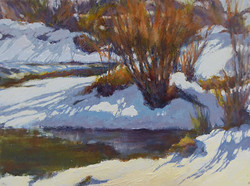 Pat Carney - Snow Patterns