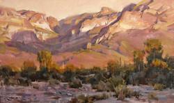 Mitch Baird - Desert Canyon Glow