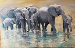 Ina Millman - Elephants Splashing