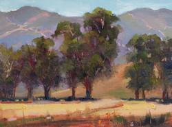 JoAnne Wood Unger - King Gillette Park, Malibu