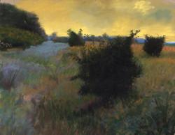 Ron Monsma - Blue Field, Yellow Sky