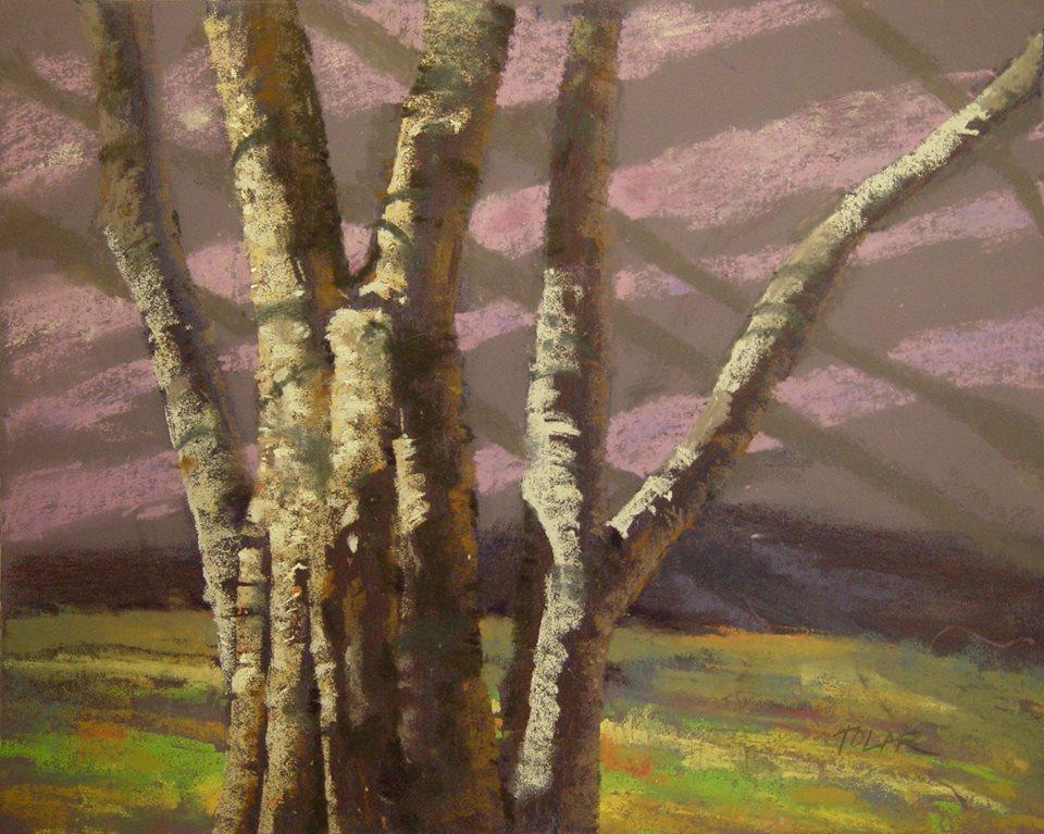 Jude Tolar - Autumn Light