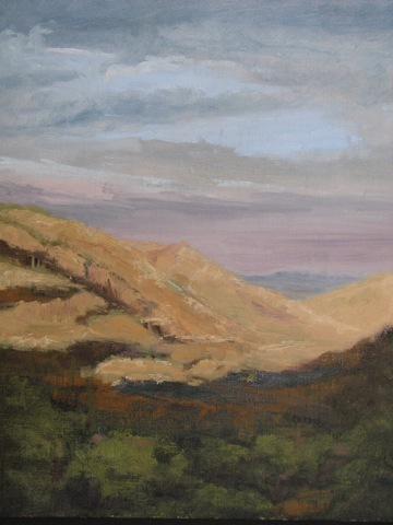 Linda Curtis - Desert Shadow