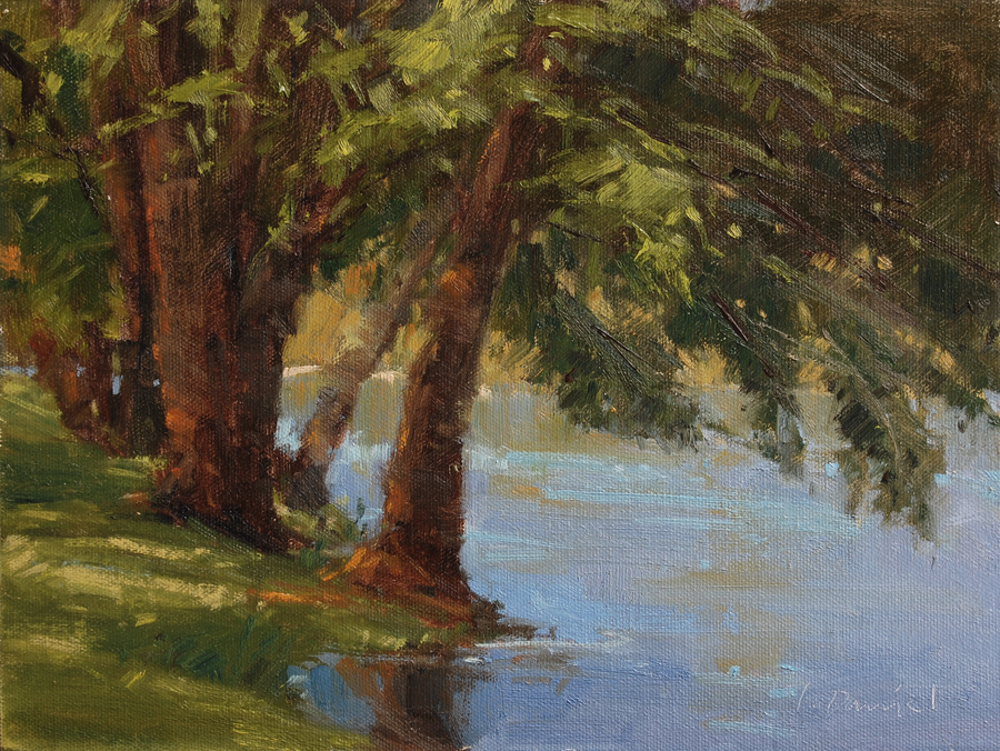 Laurel Daniel - Overhanging Cypress.jpg