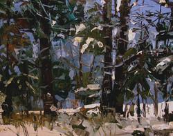Brian Simons - Winter's End