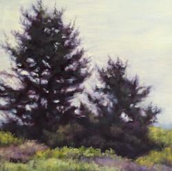 Sharon Price - Coastal Silhouettes