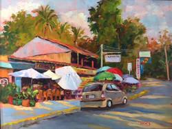 Ginny Takacs - Costa Rican Market