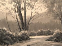 Mark Saenger - Magical Light