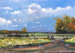 Mike Samson - Chilly Morning near Grove
