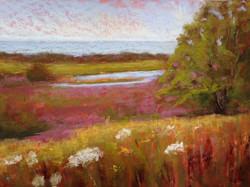 Jane Penfield - Harkness Meadow (plein air)