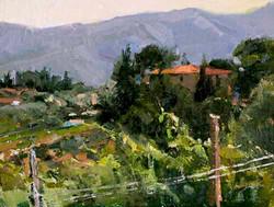 Howard Friedland - Tuscan Valley