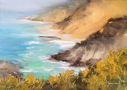Donna Pierce-Clark - Big Sur Sea Mist