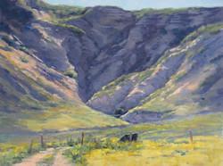 Ginny Butcher - Summer Pasture