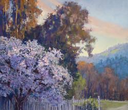 Clark Mitchell - Old Magnolia II (studio)