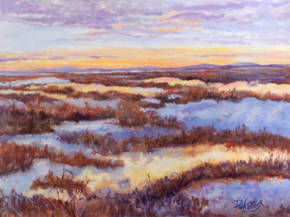 Alicia Drakiotes - Plum Island Sunset