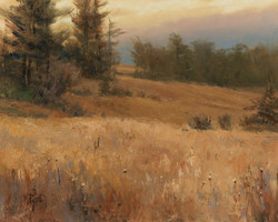 Mary Pettis - Meadow at Dusk