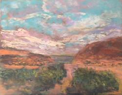 Suzanne Leslie - Canyon lands