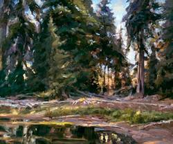 Howard Friedland - At the Edge of the Lake