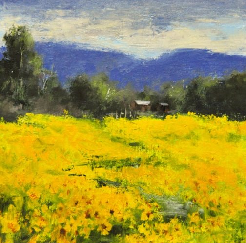 Cheryl St. John - Acres of Sunflowers