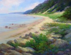 Lana Ballot - North Shore Morning