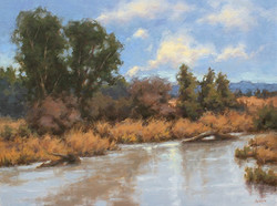 Janet Anderson - After the Rains
