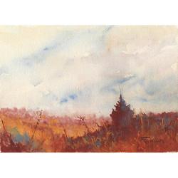 Zan Barrage - Overgrowth