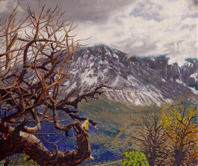 Daniel Fishback - Porcupine Rim Trail