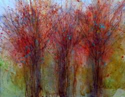 Karla Nolan - Trees In Change