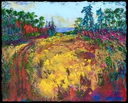 Nancy Overbury -  Abandoned Field