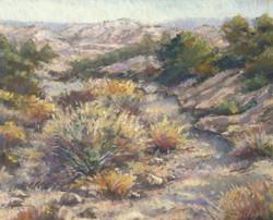 Chris Willey - New Mexico Arroyo