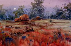 Joe Cartwright - Outback Rising Moon