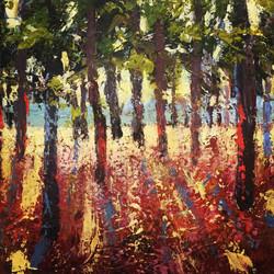 Holly Friesen - Through the Trees