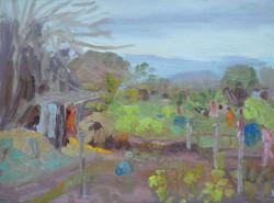 Georgie Rey - Onion Fields, Mauritius