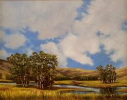 John Nichols - Solano Sky