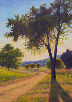 Kathy Mohl - Almost Twilight