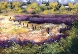 Bonnie Zahn Griffith - Fence Across the Marsh