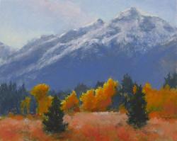 Pat Carney - Autumn Radiance