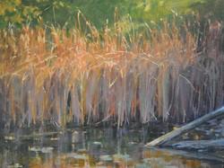 Karen Blackwood - Pond Grass