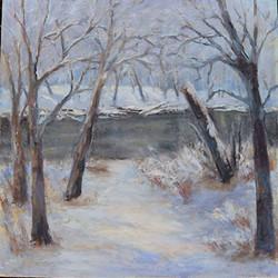 Tamar Rudavsky - Olentangy in Snow