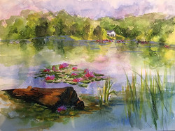 Donna Pierce-Clark - Lake Logan Lily Pads