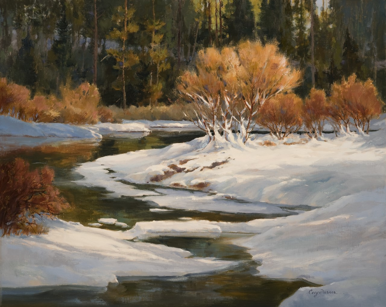 Cecy Turner - Winter Willows in Moraine Park