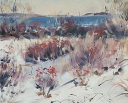 Douglas Howe - Prouts Neck