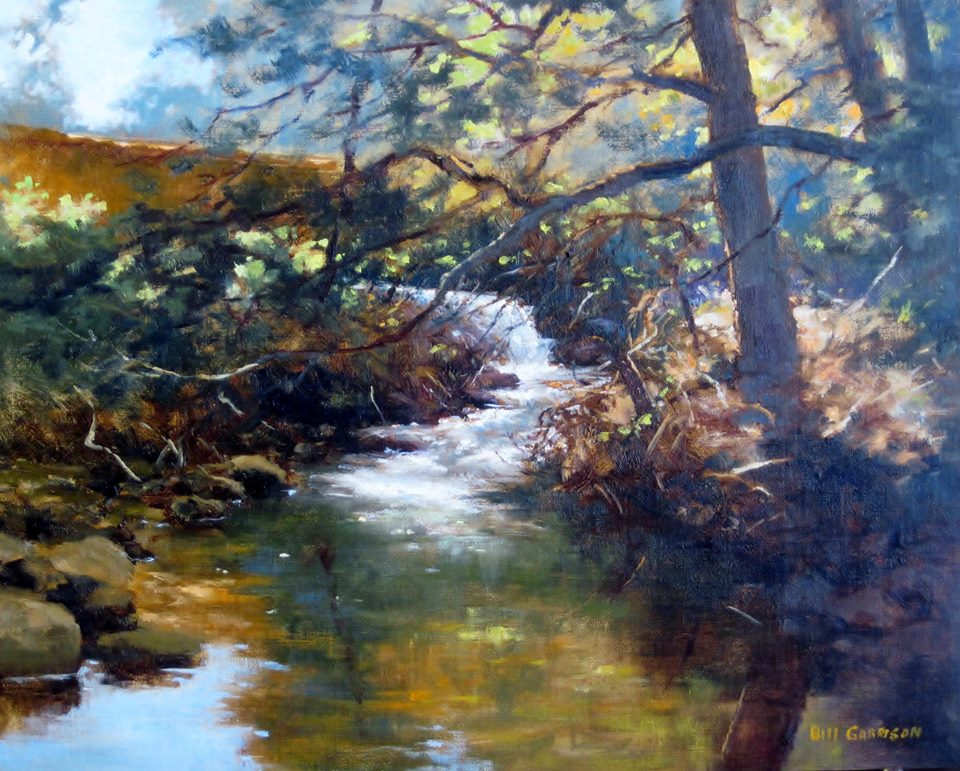 Bill Garrison - Brier Creek.jpg