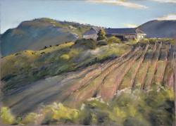 Christopher Reid - La Vierge Winery