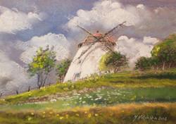 Monika Niżyńska - Old Mill, Poland