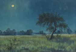 J.R. Cook - Full Moon