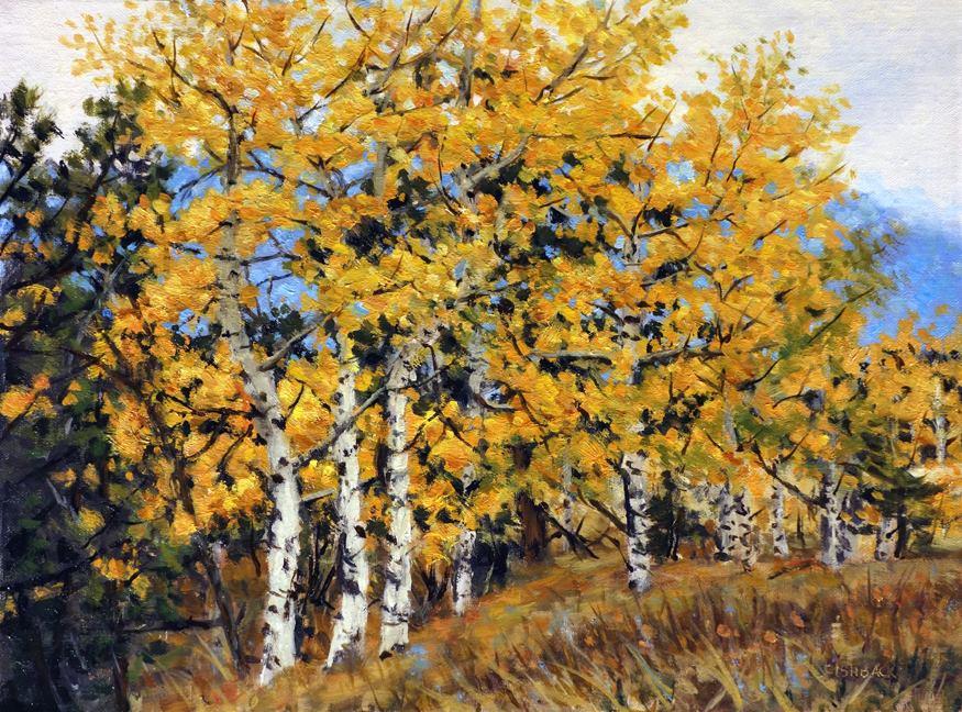 Daniel Fishback - Aspen Trees in Colorado