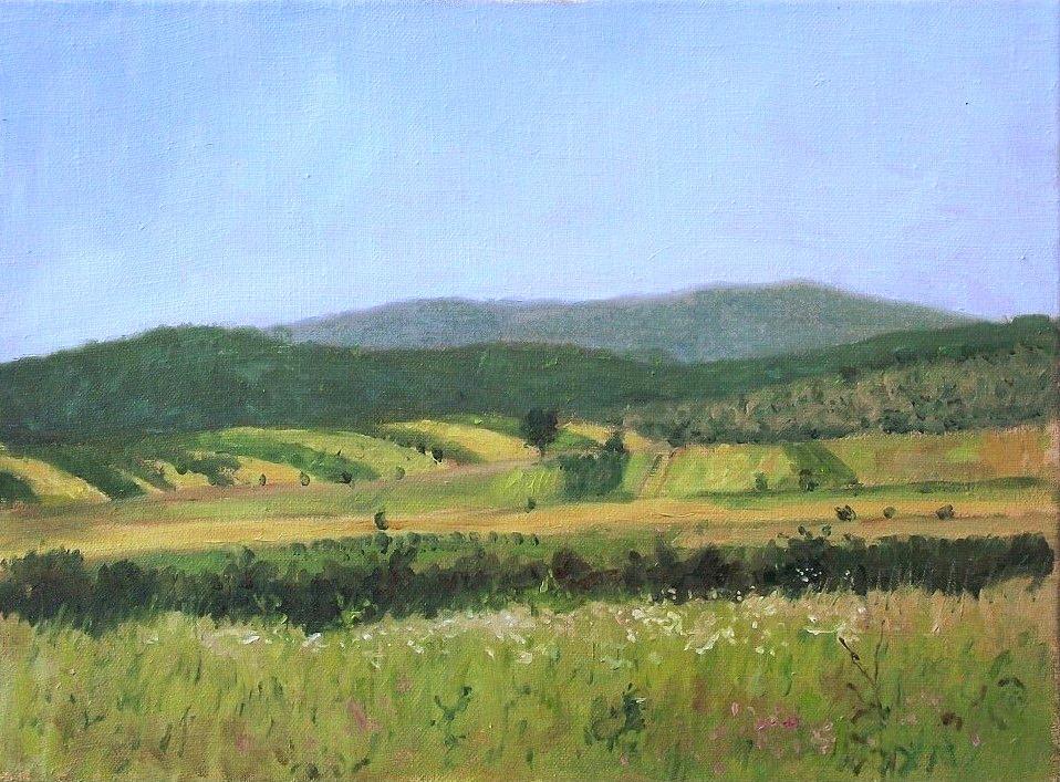 Dejan_Trajković - Meadows and Hills