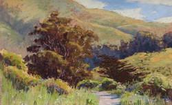 Clark Mitchell - Tennessee Valley